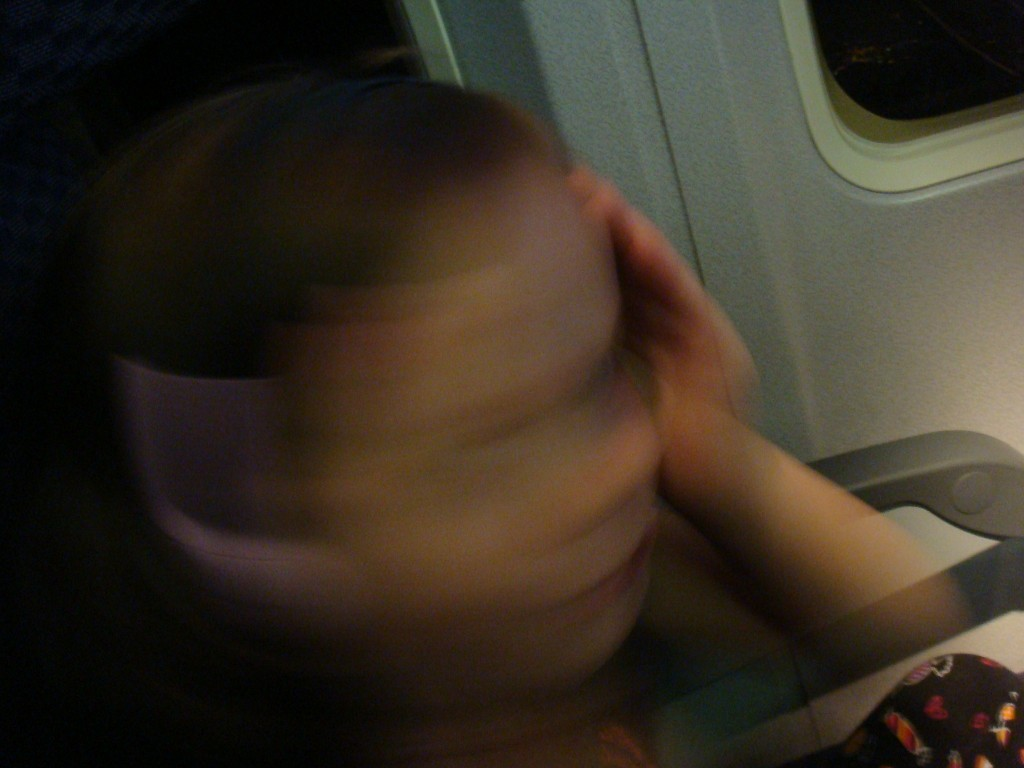 Insane on a Plane