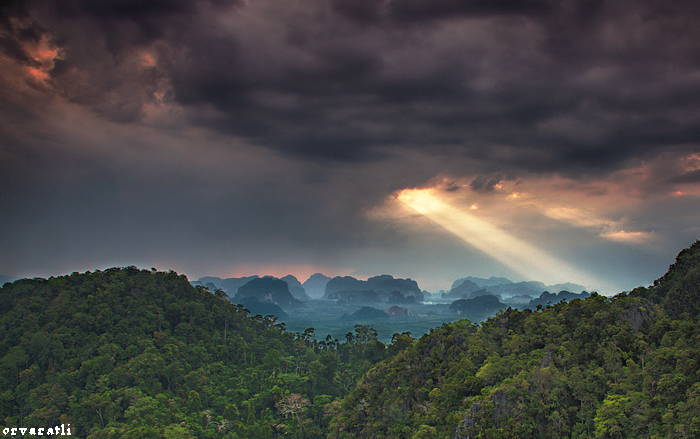 amazonian-landscape-with-light-shaft