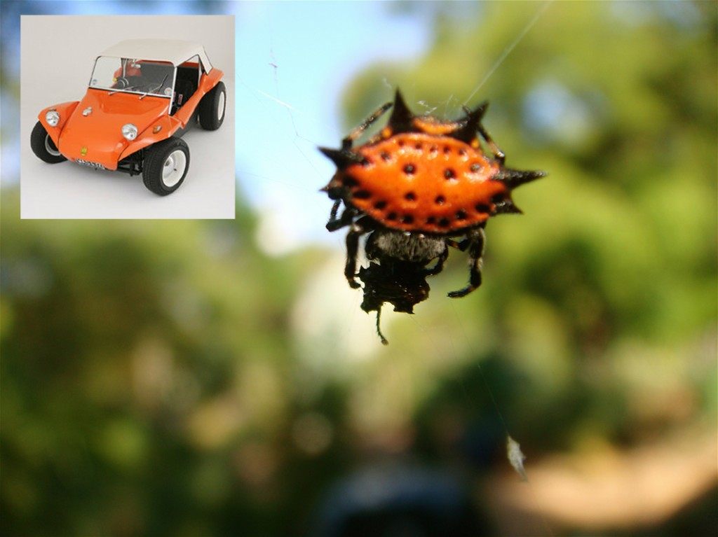orb_buggy